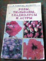 розы тюльпаны гладиолусы и астры
