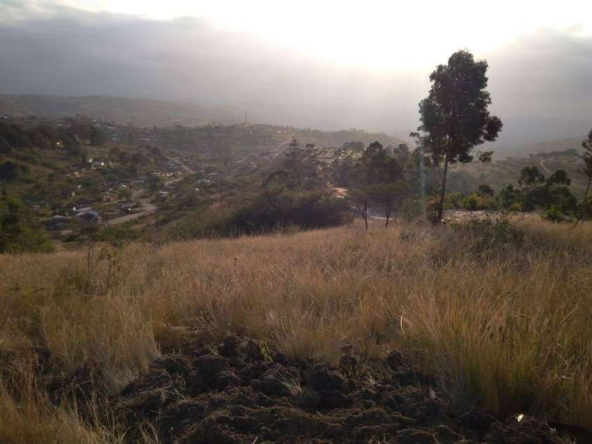 3 Hect land for Sale 0
