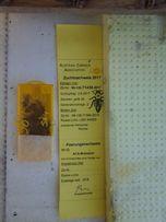 Пчеломатки карника(краинка) Бджоломатки Матки пчелиные