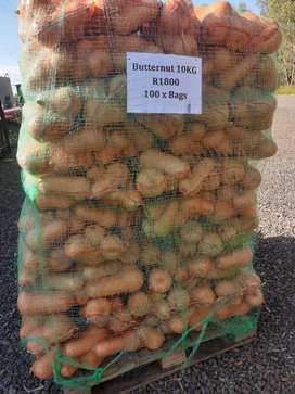 Butternut for sale