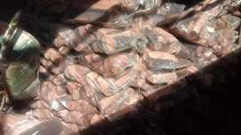 Firewood domestic and commercial purposes on sale in Kempton Park.