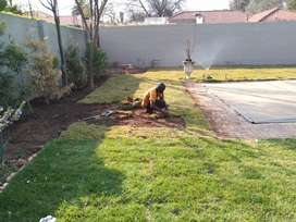 Quality lawn delivery and installation