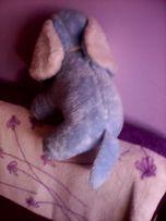 Nowy duzy słoń - pluszak