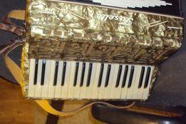 akordeon 80