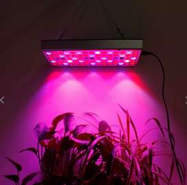 Full LED Grow Kit (Grow indoors this Winter!)