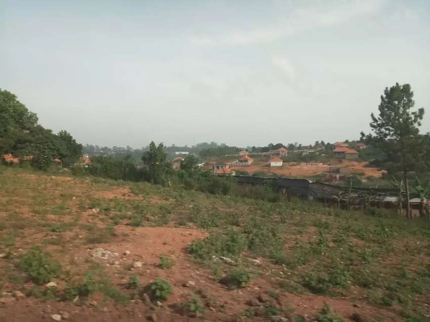 Gayaza kabanyoro 100 by 50 ft plots at 35m 0