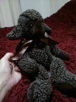 овчина барашка игрушка
