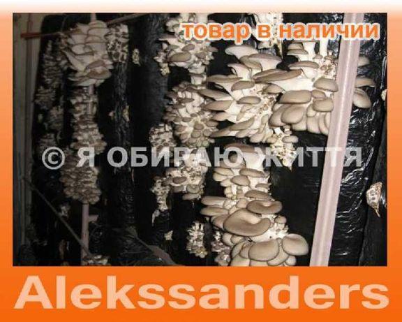 Мицелий гриба вешенка 1 кг - на 5 блоков и на пеньки