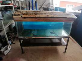 4 ft tank for sale