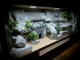 Terrarium dla gekonów