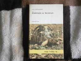 cyryl przybyszewski,zwierzeta w terrarium,plazy,gady,rosliny,