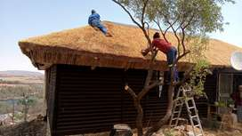 Mr thatching Lapa roofs.