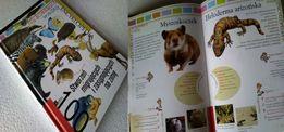 Nietypowa Encyklopedia zwierząt dla dzieci