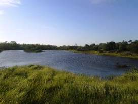 47 Hectare farm 5 min from Melkbosstrand