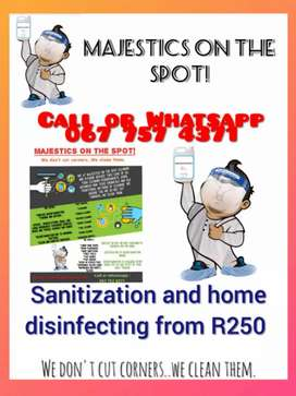 Surface Sanitizing and Disinfecting starting from R250