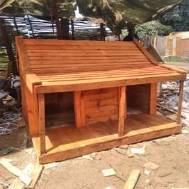 Dog kennels and cat houses