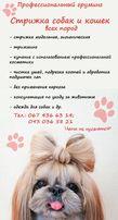 Стрижка собак и котов (тримминг) от 150грн