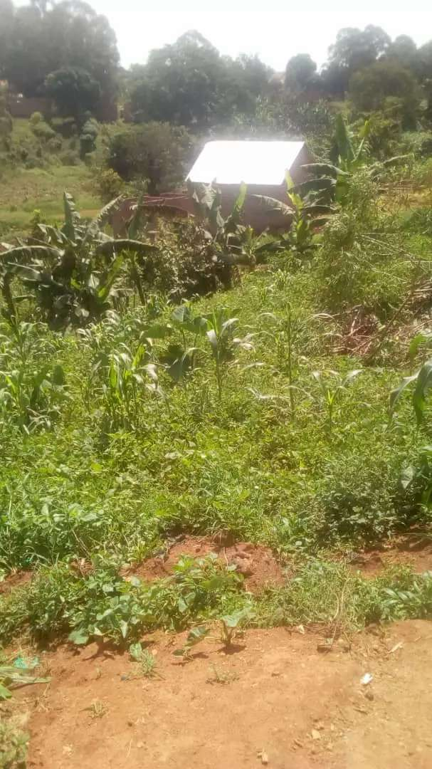 101*268ft Hot sale Titled private land 0