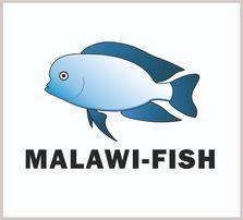Африканские Цихлиды Малави Аквариумные рыбки