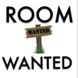 Room wanted for rent in Centurion