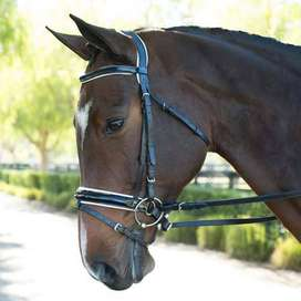 PADDED LEATHER BRIDLE (WITH ERGONOMIC POLL PIECE)