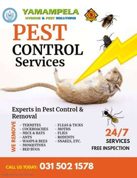 Having a pest problem? Don't worry ,we will help you