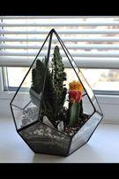 Флорариум комнатные цветы свадебный декор вазон кашпо шкатулка кольцо