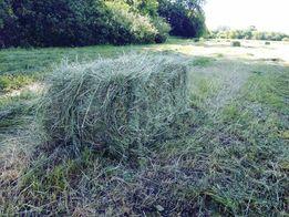 сено луговое солома пшеничная