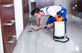 Pest control management