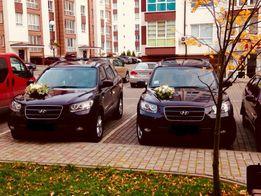 Весільний кортеж, авто на весілля Hyundai Santa Fe