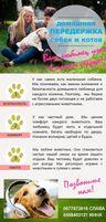 Передержка собак и котов в частном доме