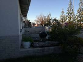 Looking for housemate to share 3 bedroom house with big garden