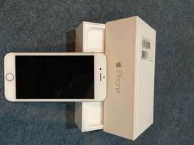 iPhone 6 white and gold series
