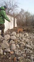 Кинолог,Дрессировка собак,Гостиница для собак/Передержка в Запорожье