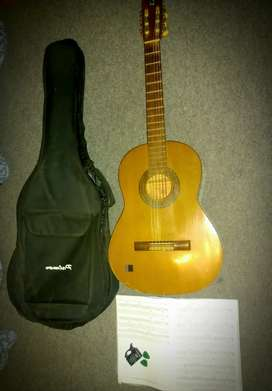 Pre-Loved Roderich Peasold P60 Guitar with accessories