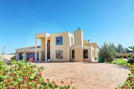 Smallholding with Tuscan Style Villa for sale Klipheuwel Durbanville