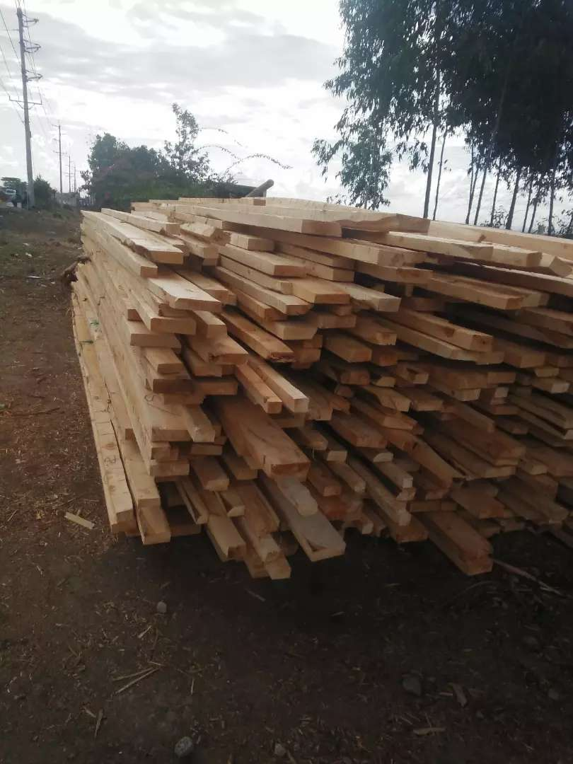 Roofing timbers for sell 0
