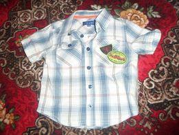Очень красивая и модная рубашечка Minoti для вашего малыша