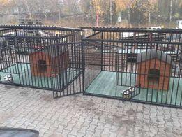 Boks Boksy Klatka Klatki Kojec dla psa Kojce dla psów OPC24h !!!