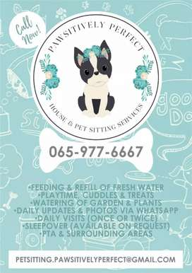 House & Pet sitting Services