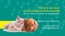 Послуги з догляду за домашніми тваринами