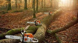 Спил деревьев и распилка дров
