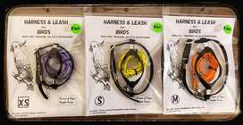 Parrot Harnesses and Leash - NOT the Parrots!