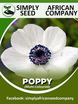 Poppy (Mixed Colours) Seeds