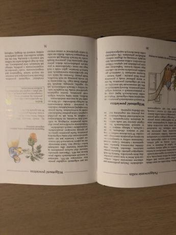 Uprawa kwiatów w domu Czchów - image 8