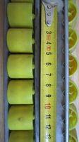 Listwa rolkowa 135cm podajnik rolkowe szyna rolkowa