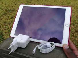 Clean IPad Air 2 Wi-Fi + Cellular (free delivery within 20km)