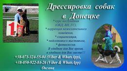 Дрессировка собак в Донецке. Хэндлинг (подготовка к выставкам)
