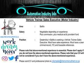 Vehicle Trainee Sales Executive (Motor Industry) Ballito