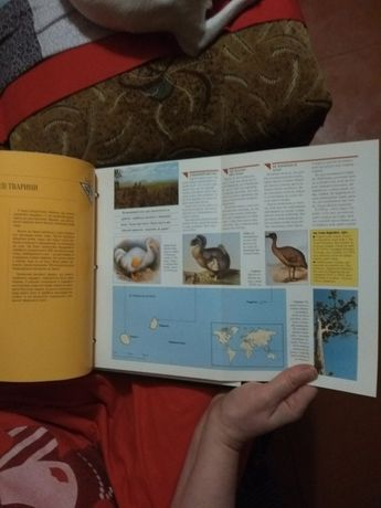 Познавательная книга про животных. Кременчуг - изображение 5